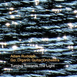 go orgnic guitar orchestra